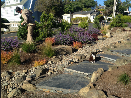 Get the Best Landscape Contractor In Gold Coast